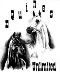 Join Equines Unlimited